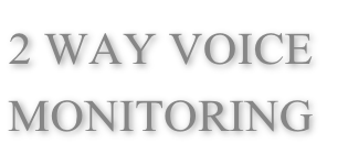 2 WAY VOICE